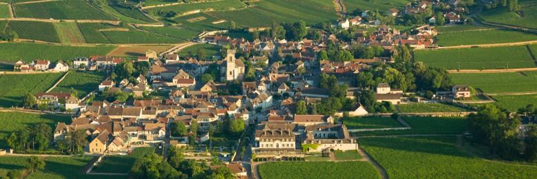 Vignoble de la Cote de Beaune, vue sur le village de Pommard.