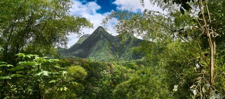 Montagne Pelée_Martinique © CMTBlog.jpg